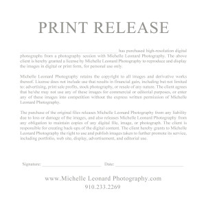 Insane image in free printable print release form
